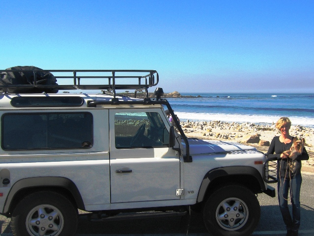 Click image for larger version  Name:17 Mile Drive Carmel, CA.JPG Views:76 Size:149.8 KB ID:16576