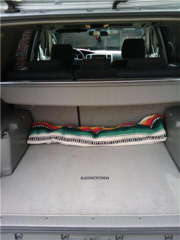Click image for larger version  Name:4Runner_Trunk.jpg Views:92 Size:23.2 KB ID:28147