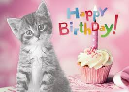 Click image for larger version  Name:BDay Cat.jpeg Views:33 Size:7.4 KB ID:121043