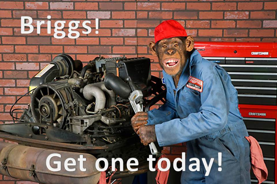 Click image for larger version  Name:briggs.jpg Views:42 Size:96.3 KB ID:104704