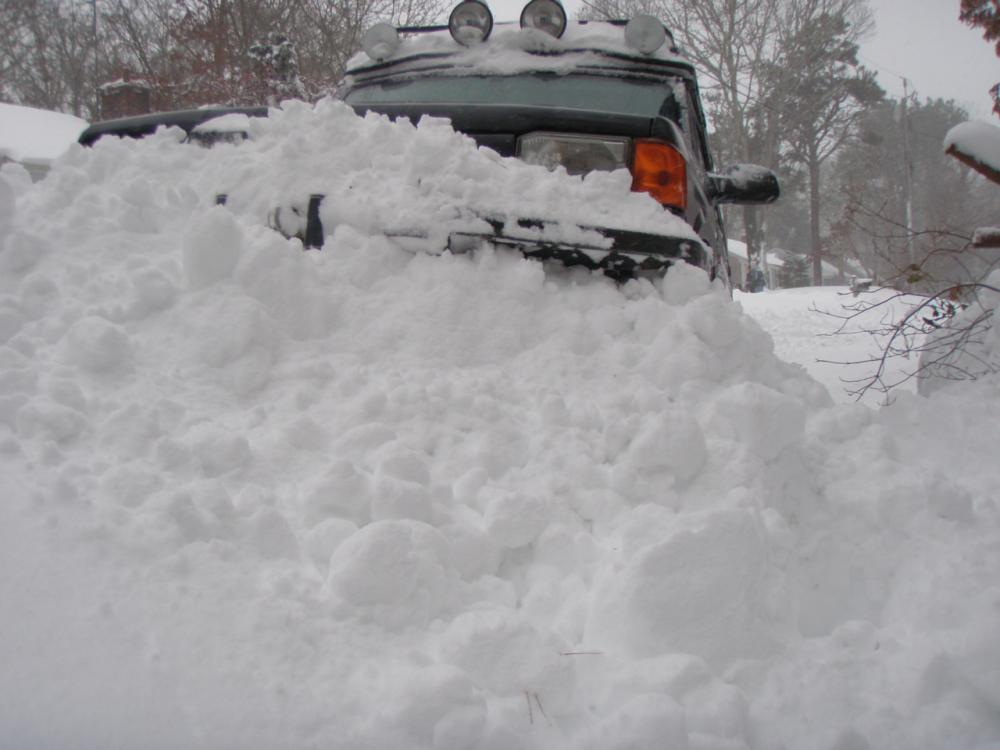 Click image for larger version  Name:capesnow0114 020.jpg Views:129 Size:63.8 KB ID:88442