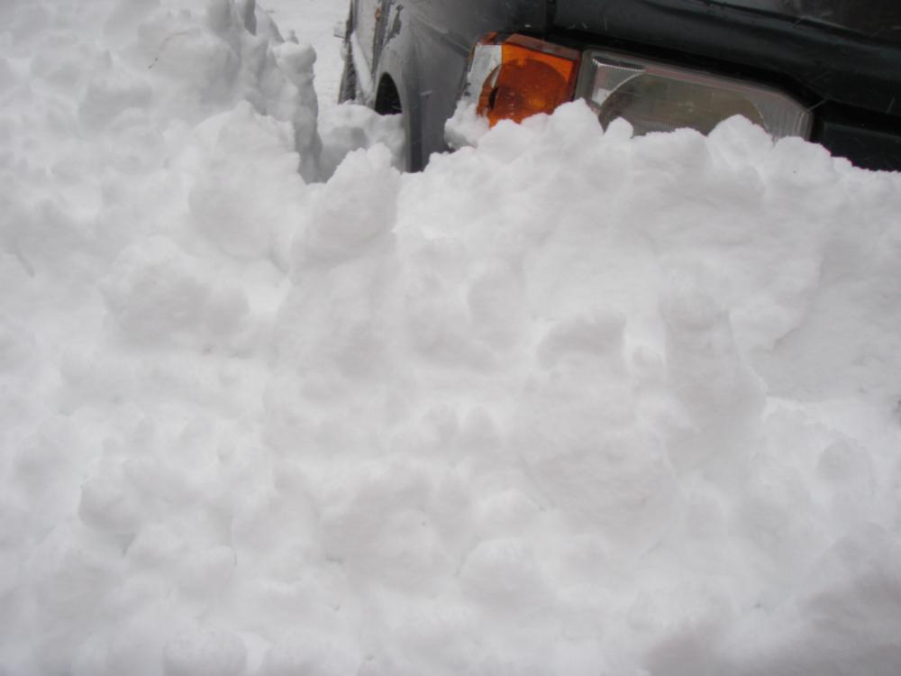 Click image for larger version  Name:capesnow0114 022.jpg Views:66 Size:38.6 KB ID:87203