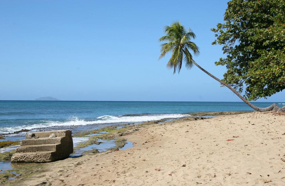 Click image for larger version  Name:Escalera Beach_F.jpg Views:42 Size:104.4 KB ID:98624