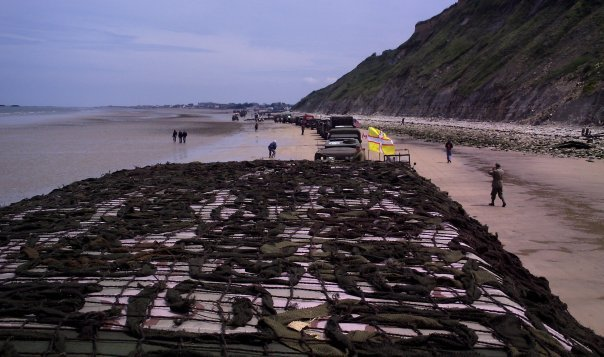Click image for larger version  Name:Gold beach 2009.jpg Views:127 Size:57.6 KB ID:39407