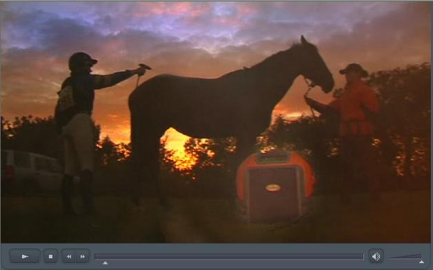 Click image for larger version  Name:horse spray.jpg Views:55 Size:22.0 KB ID:89264
