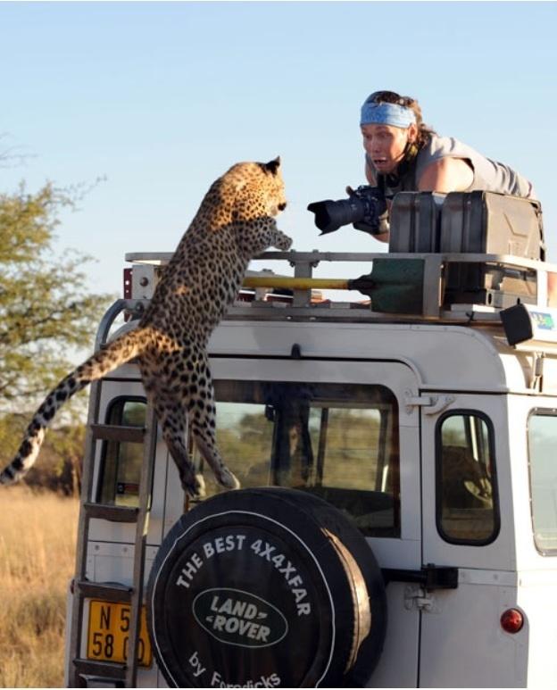 Click image for larger version  Name:LeopardAttackDefender.jpg Views:126 Size:118.0 KB ID:56614