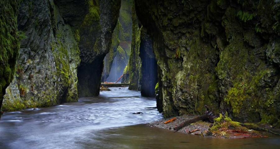 Click image for larger version  Name:Oneonta Gorge.jpg Views:60 Size:78.3 KB ID:115033