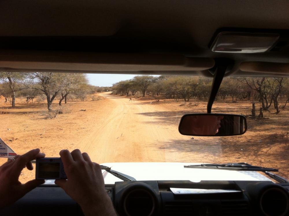 Click image for larger version  Name:safari park in gabarone.jpg Views:73 Size:80.1 KB ID:116012