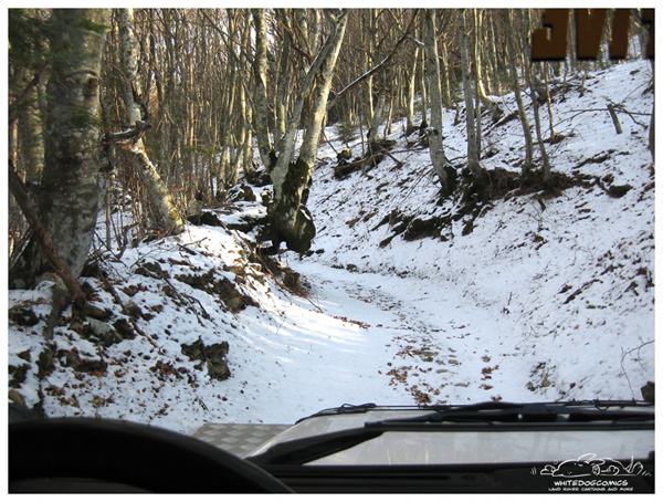 Click image for larger version  Name:snowrun-009_800600.jpg Views:83 Size:161.6 KB ID:11096