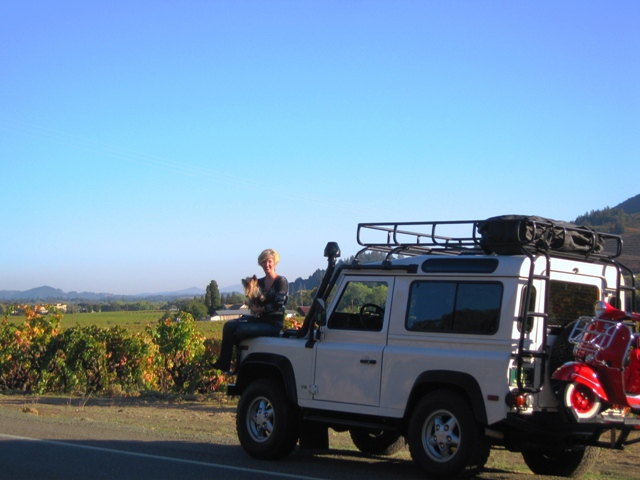 Click image for larger version  Name:Sonoma Overlooking Dry Creek Area.JPG Views:87 Size:115.0 KB ID:16563