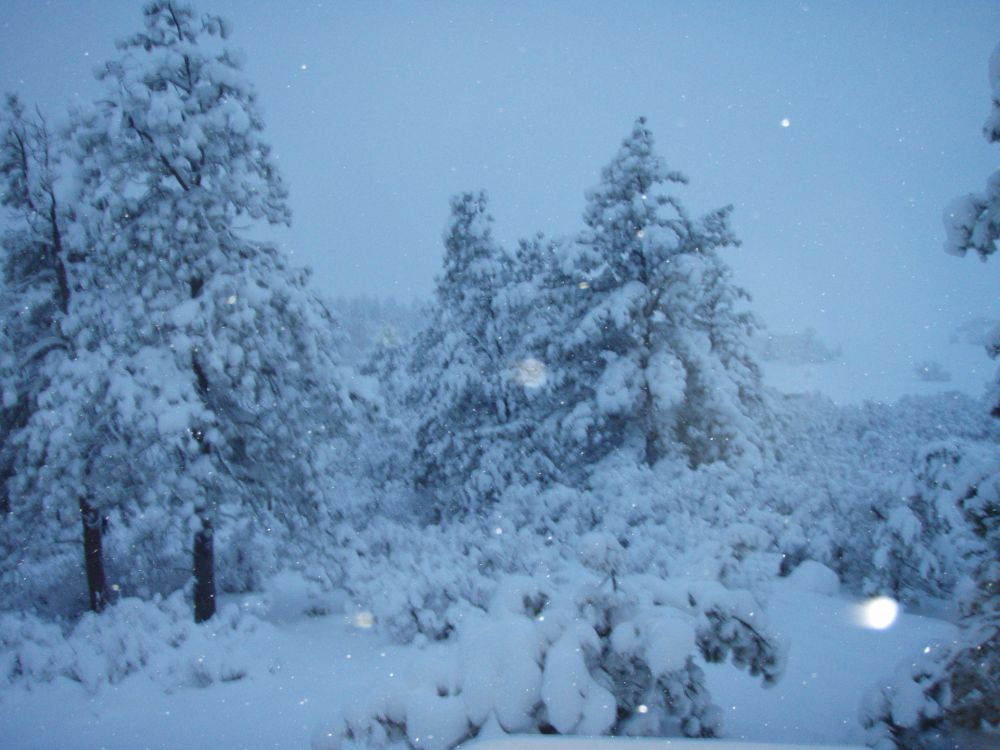 Click image for larger version  Name:springsnow.jpg Views:86 Size:110.9 KB ID:18899