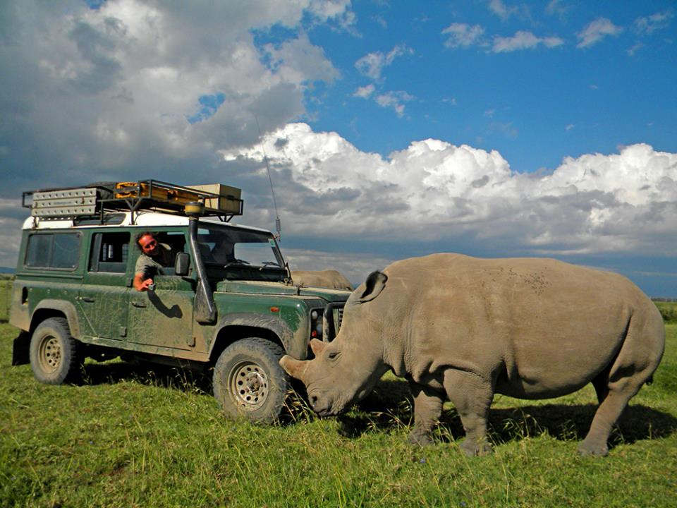 Click image for larger version  Name:thiemorhino.jpg Views:143 Size:102.1 KB ID:150599