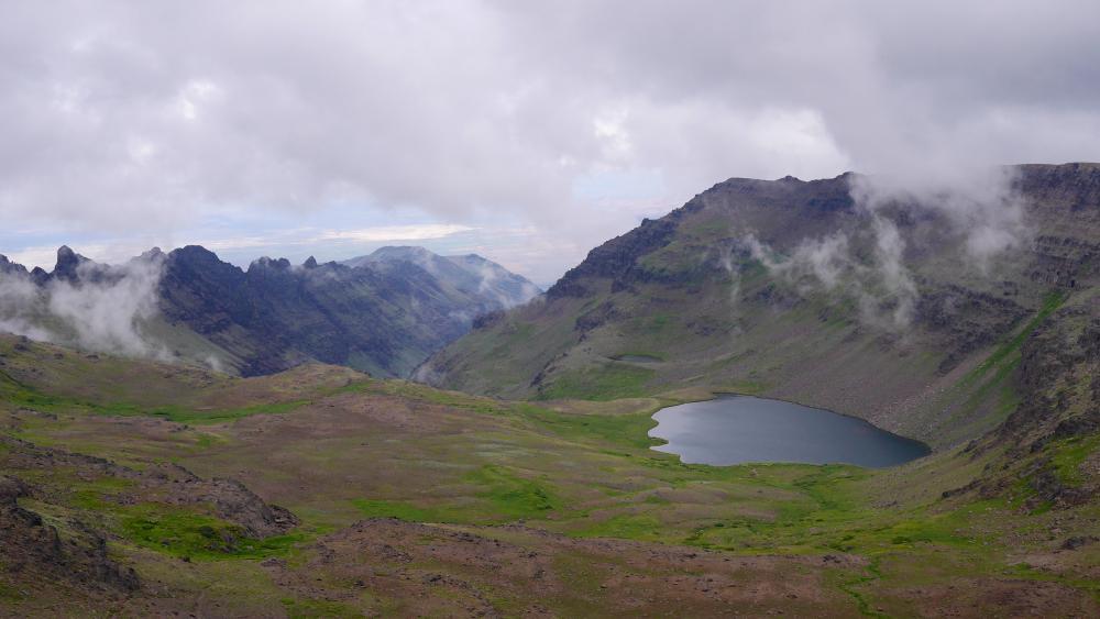 Click image for larger version  Name:Tiktaalik Wildhorse Lake 2.jpg Views:130 Size:60.1 KB ID:125351