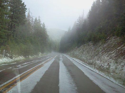 Click image for larger version  Name:timberon hail.jpg Views:97 Size:31.4 KB ID:98022