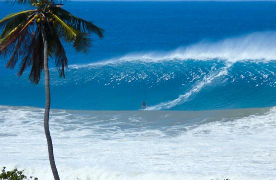 Click image for larger version  Name:tres_palmas_de_rincon_marine_reserve_pr.jpg Views:49 Size:49.8 KB ID:71963